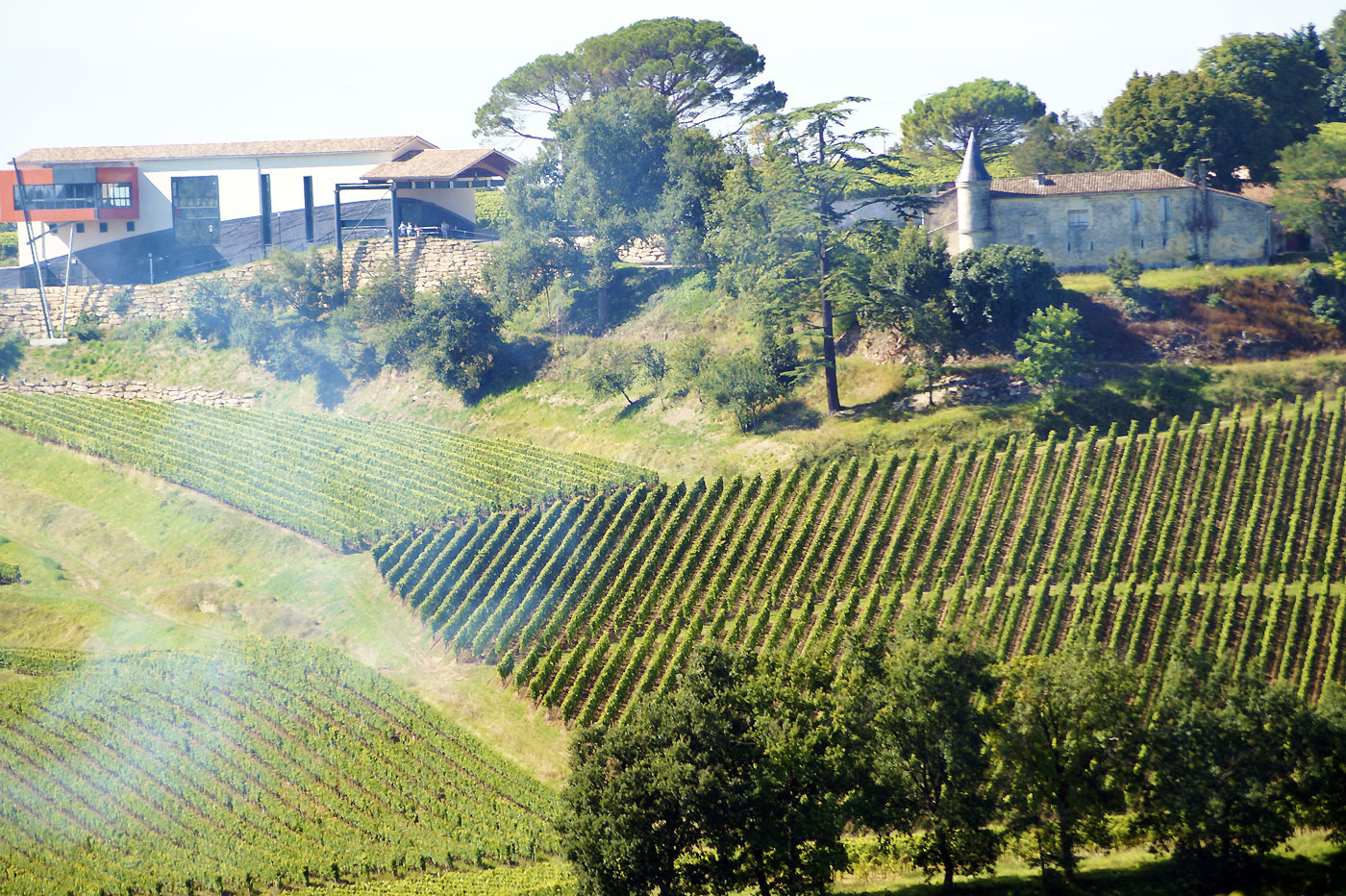 Architectures viticoles à Saint-Émilion