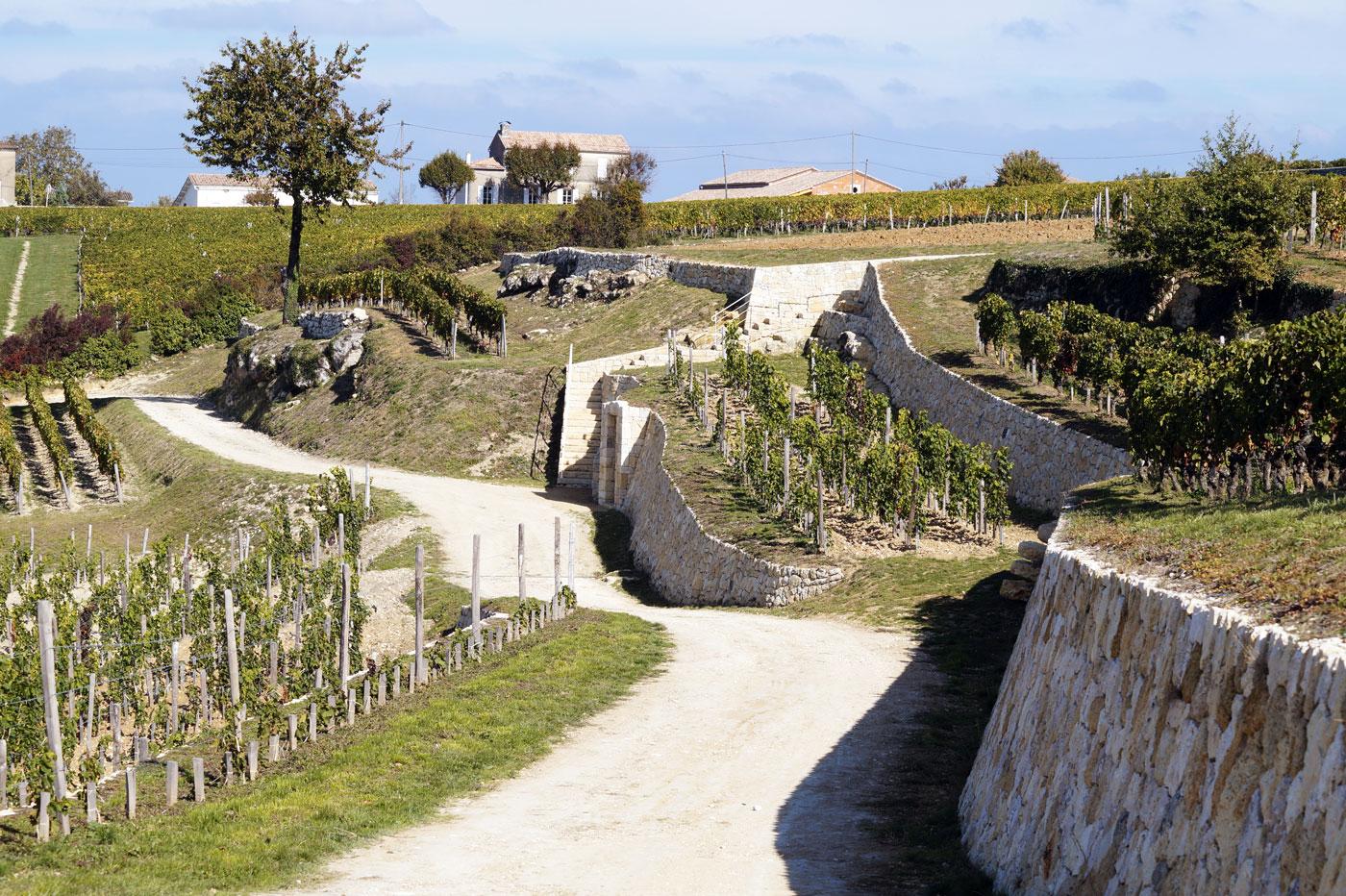 Paysage viticole et murs de pierre à Saint-Émilion
