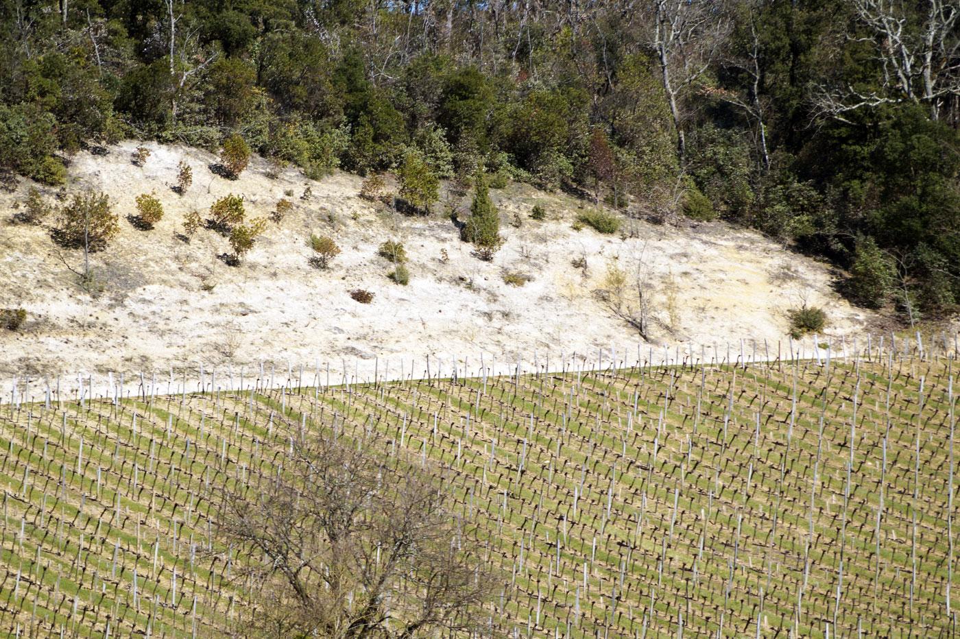 Plateau calcaire à Saint-Émilion